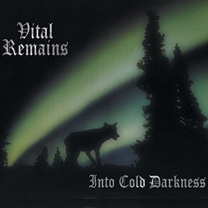 VITAL REMAINS Into Cold Darkness(Vinyl)