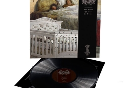 BloodbathThe Arrow of Satan is Drawn(Vinyl)